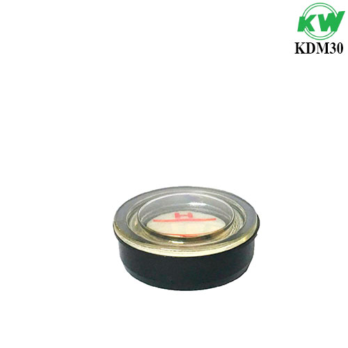 KDM30.1.