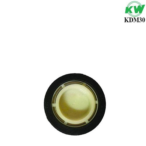 KDM30.4.